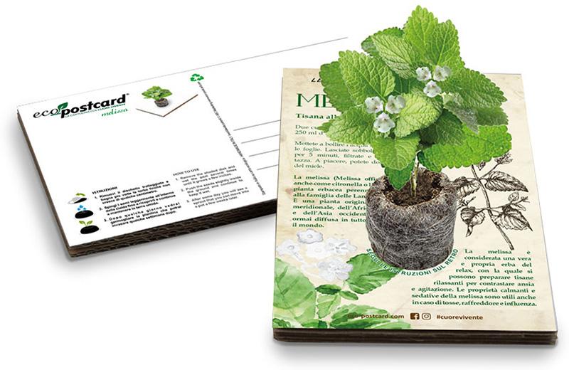 Ecocartolina con semi Eco-Postcard