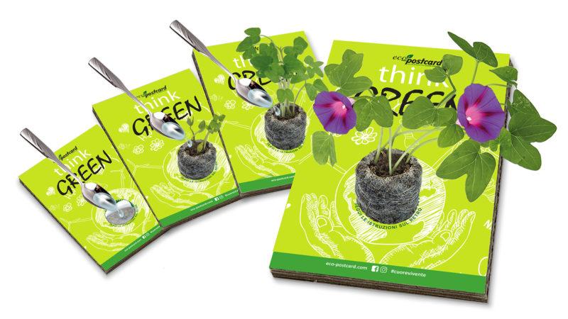 la cartolina ecologica su cui cresce una pianta